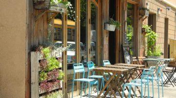 Alice's Arbor patio